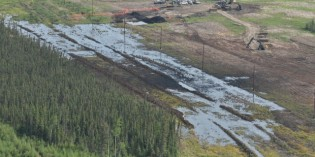 Nexen Energy ordered to shut down 95 pipelines in Alberta