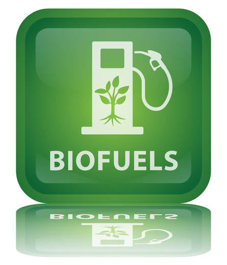 a research on alternative gases biofuels