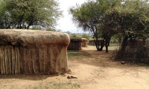 Eco-huts attract tourists, and cash, to Kenyan Maasai herding communities