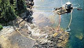 #ExxonKnew campaign claims global warming caused Exxon valdez spill