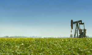 Oil prices down after recent gains due to profit-taking