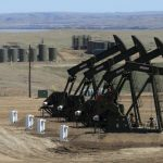 Oil prices steady, despite increasing US production