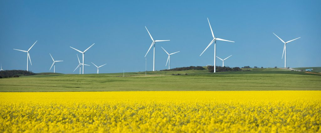 Alberta renewable auction sets Canadian record at 3.7 cent per kw/h average