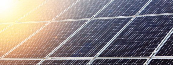 mexican renewables