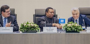OPEC officials approve group's delayed long-term strategy