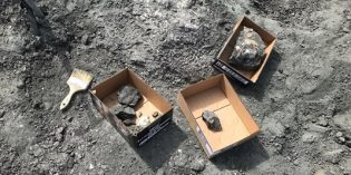 Fossil discoveries at Syncrude oil sands mine becoming a regular occurance